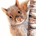Squirrel by Sherry Jarvis