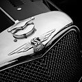 Ss Jaguar by Andy Flood