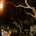 St. Augustine At Night by Robert Potts