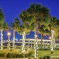 St. Augustine Bayfront Park During Nights Of Lights by Stacey Sather
