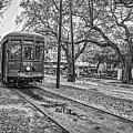 St. Charles Streetcar Monochrome by Steve Harrington