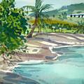St. Croix Beach by Donald Maier