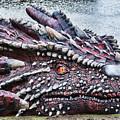 St Davids Day Dragon by Steve Purnell