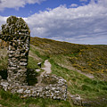 St. Declans Well by Marc Daly