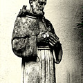 St. Francis In St. James by Rachel Narvaez