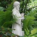St. Francis In The Garden by Diane Merkle
