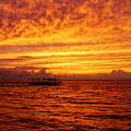 St. George Island Sunset by Paul Wilford