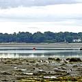 St Helens Beach To Bembridge Point by Rod Johnson