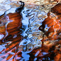 St. Johns Reflections Xiiii by Stacey Sather