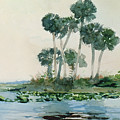 St John's River Florida by Winslow Homer