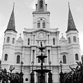 St Louis Cathedral And Fountain Jackson Square French Quarter New Orleans Black And White by Shawn O'Brien