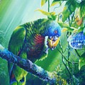 St. Lucia Parrot And Wild Passionfruit by Christopher Cox