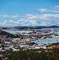 St. Maarten Landscape by Anthony Dezenzio