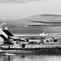 St. Margarets Hope, Orkney.    Black And White by David Lyons