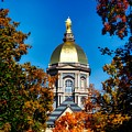 St Mary Atop The Golden Dome Of Notre Dame by Mountain Dreams
