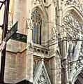 St. Patrick's Cathedral by Daniele Zambardi