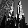 St. Patrick's Cathedral by John Schneider