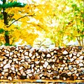 Stack Of Firewood by Jeelan Clark