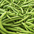 Stack Of Green Beans Arranged For Sale by PorqueNo Studios