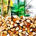 Stacked Fire Wood In Preparation For Winter 1 by Jeelan Clark