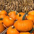 Stacked Pumpkins by Joye Ardyn Durham
