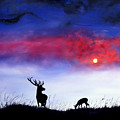 Stag And Deer In Moonlight by Linda Woodward