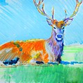 Stag With Antlers Lying Down by Mike Jory