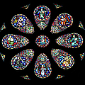 Stained Glass Rose Window In Lisbon Cathedral by Artur Bogacki