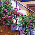 Stairway Floral Plein Air by David Lloyd Glover