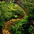 Stairway To Heaven by Blair Stuart