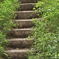 Stairway To Heaven by Heather Green