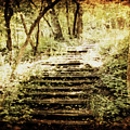 Stairway To Heaven by Julie Hamilton