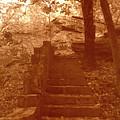 Stairway To Heaven by Nina Fosdick