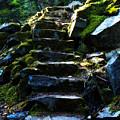 Stairway To Heaven by Peter Olsen