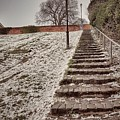 Stairway To Spring by Zahra Majid