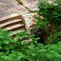 Stairway To by Wayne Higgs