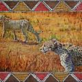 Stalking Cheetahs by Carol J  South