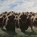 Stampede by Anthony Bear