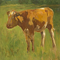 Standing Calf by Thomas Ludwig Herbst