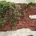 Star Bricks by Dylan Punke