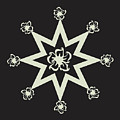 Star Flower - Ebony And Ivory by Raven Steel Design