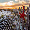 Star On Fence  by Michael Thomas