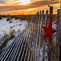 Star On Fence Verticle by Michael Thomas