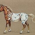 Star Spangled Horse by Eden Alvernaz