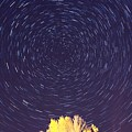 Star Trails by Jessica Cooley