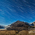 Star Trails Over Columbia Icefields by Alan Dyer