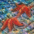 Starfish 1 by Sue Duda