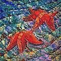 Starfish 2 by Sue Duda