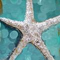 Starfish Goldie by Kristen Abrahamson