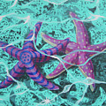 Starfish In Love by Tommy Midyette